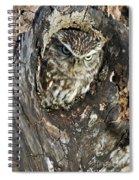 100205p260 Spiral Notebook