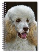 101130p044 Spiral Notebook