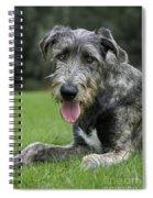 101130p060 Spiral Notebook