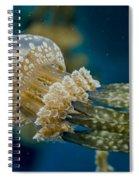 1031 Spiral Notebook