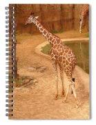 1090 Spiral Notebook