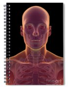 Bones Of The Head And Neck Spiral Notebook
