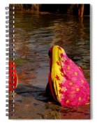 Hampi Ghats Spiral Notebook
