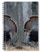Jake Eastern Wild Turkeys Spiral Notebook