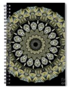 Kaleidoscope Ernst Haeckl Sea Life Series Spiral Notebook