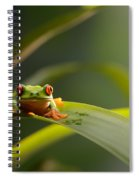 Red Eyed Tree Frog Spiral Notebook