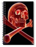 Skull And Crossbones Spiral Notebook
