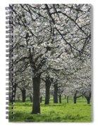 110111p265 Spiral Notebook
