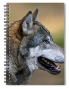 110221p045 Spiral Notebook