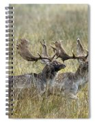 110221p118 Spiral Notebook