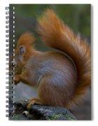 110307p078 Spiral Notebook
