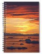 110307p086 Spiral Notebook