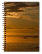 110307p087 Spiral Notebook
