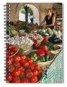 110307p163 Spiral Notebook