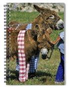 110307p164 Spiral Notebook