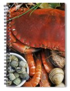 110307p165 Spiral Notebook