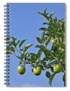 110414p073 Spiral Notebook
