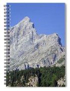 110414p100 Spiral Notebook
