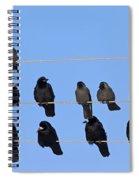 110506p063 Spiral Notebook