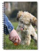 110506p131 Spiral Notebook