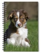 110506p160 Spiral Notebook