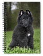 110506p179 Spiral Notebook