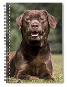 110506p185 Spiral Notebook