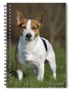 110506p196 Spiral Notebook