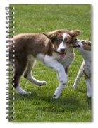 110506p200 Spiral Notebook