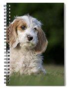 110506p204 Spiral Notebook