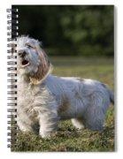 110506p207 Spiral Notebook