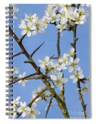 110506p221 Spiral Notebook