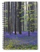 110506p237 Spiral Notebook