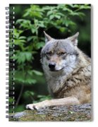 110613p025 Spiral Notebook