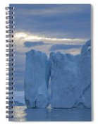 110613p180 Spiral Notebook