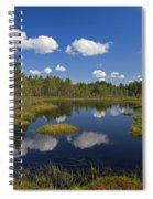 110613p187 Spiral Notebook