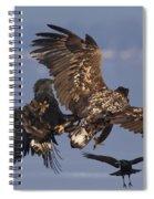 110613p229 Spiral Notebook