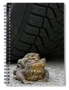 110714p108 Spiral Notebook