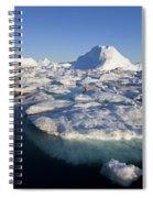 110714p242 Spiral Notebook