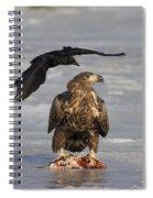 110714p311 Spiral Notebook
