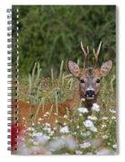110714p324 Spiral Notebook