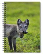 111130p048 Spiral Notebook