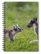 111130p054 Spiral Notebook