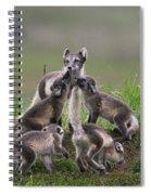 111130p061 Spiral Notebook