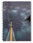 111130p125 Spiral Notebook