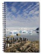 111130p132 Spiral Notebook