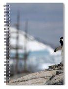 111130p158 Spiral Notebook