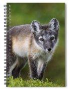 111216p021 Spiral Notebook