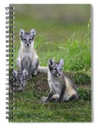111216p022 Spiral Notebook