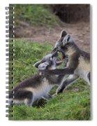 111216p027 Spiral Notebook